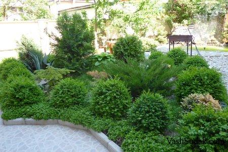 Отель Ботанический Сад. Судак