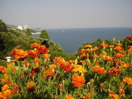 Красивый Крым. Фото