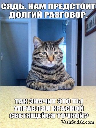 Серьезный разговор Кота с хозяином