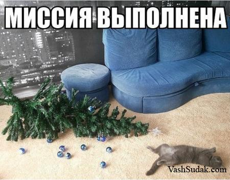 Миссия Перевыполнена :)))