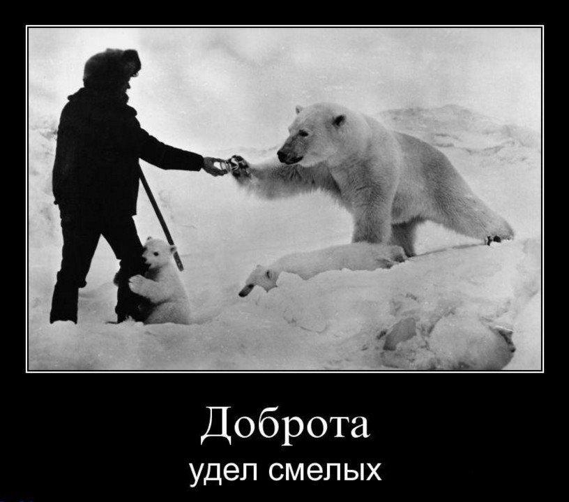 Доброта - удел смелых
